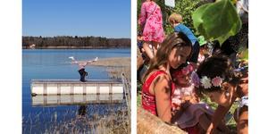 Till vänster testar Emma Berggren balansen på bryggan. Foto: Roland Carlsson. På väg mot midsommardansen till höger, foto: Sofia Diaz Ahlberg