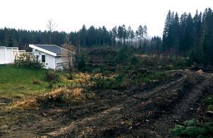 Avverkningen i området i Kovland är klar. Nu börjar jobbet med att färdigställa vägnätet.