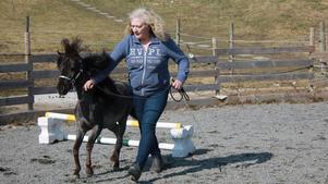 Den amerikanska miniatyrhästen och prisvinnaren Blue Moon övar gärna lite hoppning tillsammans med ägaren Monika Swedstrand.