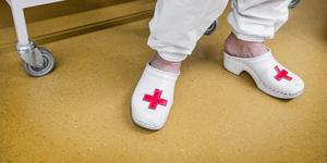 """""""Massagerecepten ger ökad komfort och välbefinnande, och minskar oro, samt minskar ibland behovet av smärtlindrande medicin, enligt nya och tidigare forskningsrön"""". Foto: Tomas Oneborg/SvD/TT"""