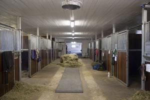 Stallet har varit en av Norrlands största grisgårdar en gång i tiden. Det byggdes sedan om i början av 2000-talet.