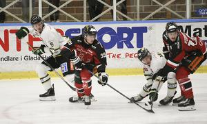 HHC fick kämpa hårt för poängen och segern mot Enköping.