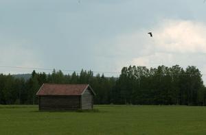 Det finns gott om plats för bostadsbyggande på landsbygden. Arkivfoto.
