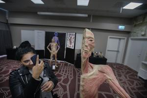 Vanessa Sabani från Drottning Blanka-gymnasiet fotograferar en riktig människa i genomskärning.