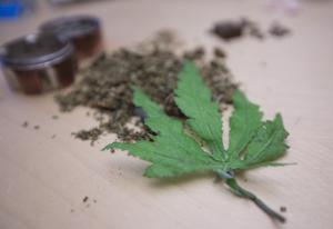 Den torkade cannabisen har polisen beslagtagit. Bladet är gjort av plast eftersom polisen inte får ha levande plantor. Det brukar visas upp vid informationsmöten med fokus på drogförebyggande arbete.