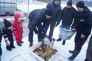 Fiskeklubben tycker isläppet gick smidigt och snabbt.