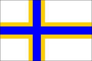 Sedan 2014 finns det en sverigefinsk flagga som Andreas Jonasson formgivit.