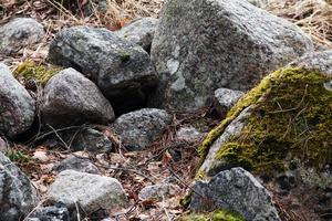 Häxmyran fick sitt namn eftersom kvinnor dömda för trolldom ska ha avrättats här. På platsen syns även detta stenröse som har pekats ut som en eventuell grav