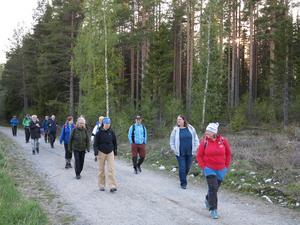 Deltagarna på väg hemåt efter avslutat skogsbadskväll.