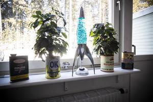 Uffes barnbarn tycker det är konstigt att ha en gammal oljeburk som blomkruka. Uffe tycker de passar bra.