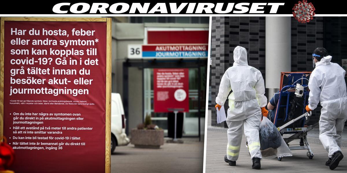 Så slår coronaviruset mot Västmanland – följ utvecklingen Lena bjöds på cykeltur efter månader i coronakarantän ...