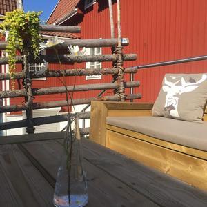 Foto: Radical Wood. Utanför Åre Kafferosteri.