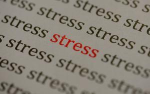 Hälsobarometern 2019 visar nedslående siffror vad gäller svenskarnas upplevelse av stress. Örebro län toppar dessutom hela listan. Foto: TT