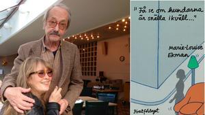 Marie-Louise Ekman förde anteckningar under en fyra månader lång sjukdomstid. Foto: Susanne Otto