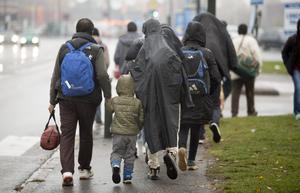 En bild från 2015 års stora migration till Sverige. Foto:Drago Prvulovic / TT