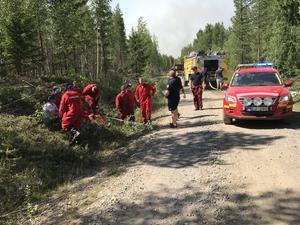 Räddningstjänsten omgrupperar för att ta sig an skogsbranden vid Gryssjön i närheten av Fågelsjö.