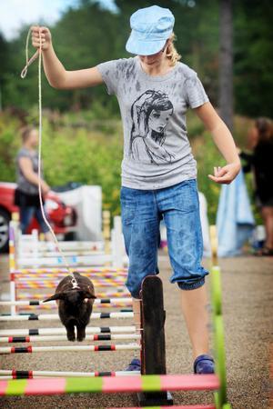 Jeanett Nord, 10, hade två kaniner med sig till tävlingen, Svartöra och Mone över oss.