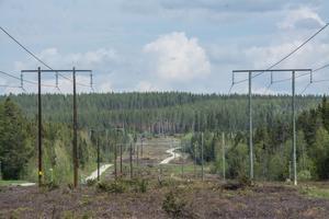 Ungefär så här långt, längs kraftledningsgatan vid Odenskog, kommer Lillsjöns naturreservat att sträcka sig. Det ger då möjlighet att bygga en utfart mot E14 utan att reservatsbestämmelserna sätter käppar i hjulet.