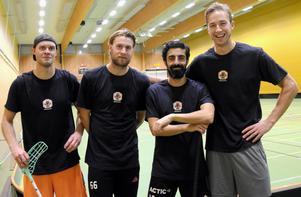 Från vänster Jonas Adriansson, Adam Fernqvist, Ciya Hajo och Jonas Carlgren bildar en kvartett av tidigare SM-guldvinnare i division 2-laget HAIK.