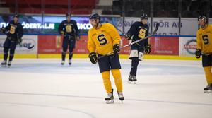 Den kommande säsongen blir Janolhs elfte i hockeyallsvenskan. Debuten skedde för Leksand 2009–10.