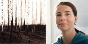 Bilden är ett montage. Foto: Arne Falang/ AnnKatrin Blomqvist/ Wetterling Gallery