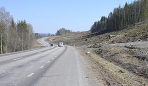 Under vintern har Trafikverket avverkat bort skog där den nya vägen ska gå.