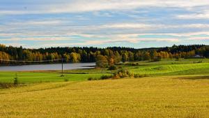 Fotot är taget den 5 oktober efter vägen till Livsdal, jag tyckte det var så vackert med åkrarna och höstfärgerna runt Holmsjön.      Foto: Kjell Lindqvist
