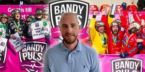 Rikard Bäckman, ny chefredaktör på Bandypuls.