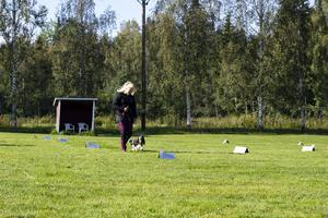 Esther Mann, 12, och hunden Vega i full koncentration.