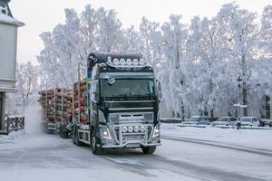 Den nya föreningen kommer hantera miljontals skogskubikmeter per år.
