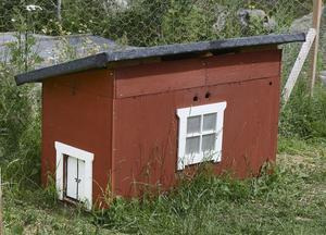 BB-avdelning. Innan nya huset var klart började hönor ruva på kycklingar och Kenneth byggde ett provisoriskt bb-hus.