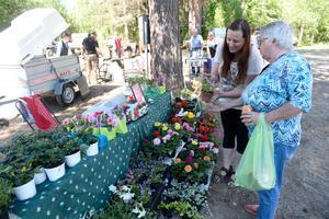 Gunhild Björk köpte blommor av Maria Jonsson från Fränsta blomsterhandel.