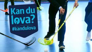 Kan politikerna i Leksand lova att byggandet av en ny sporthall blir av inom en snar framtid? Den frågan har ställts till politikerna via Mittmedias tjänst #kandulova.