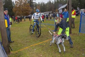 Göran Olsson gör sig klar för start i veteranklassen.  Tränaren Gunilla Olsson hjälper till att hålla tillbaks en övertaggad Vinzo.