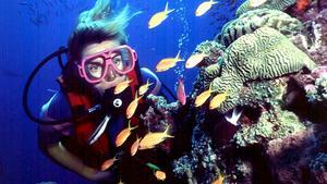 Det stora barriärrevet utanför Australiens östkust är en av de mest populära destinationerna för dykare i världen. Foto: Brain Cassey/AP Photo/TT