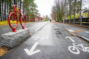 Förslagsförfattaren menar att det finns ett stort missnöje mot expresscykelvägen på Brunflovägen. Hen efterfrågar en folkomröstning om den fortsatta utbyggnaden av expresscykelvägarna i Östersund.