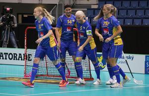 Sverige besegrade Tyskland med 23–2 i VM-premiären. Bild: IFF