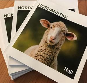 Bilden på fåret som säger Hej! ska locka turister till Nordanstig. Skymningen sänker sig, skriver insändaren.