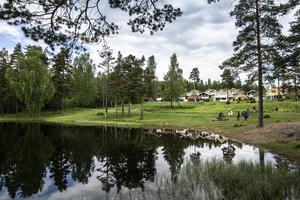 Dammyran är en unik badplats med sin närhet till skogen och sin rena miljö, skriver Åsa Gustafsson som svar till Ronny Beyer (S) angående det planerade bostadsbygget i området.