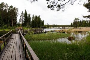 Gimåns rastplats har inte bara toaletter och en soptunna, här finns också fina fiskevatten.