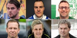 Experterna. Övre raden från vänster:  David Karlsson, Martin Röing, Stefan