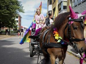 Det var inte bara människor i tåget – hästen Chloe från Gävletravet gick också med.