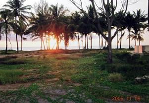I november 2004 åkte hon tillbaka till Thailand. På platsen där tegelhusen stått fanns ingenting kvar. Till höger syns resterna av strandbaren. Två restauranger och receptionen spolade också bort. Foto: Privat