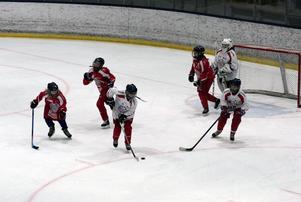 Falu IF:s damjuniorer underhöll publiken med en internmatch i första periodvilan mellan Falu IF och Skedvi/Säters IF.