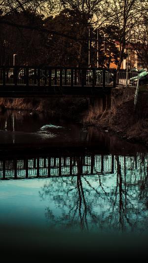 Bilden togs på bron vid ankdammen i Köping när jag var på väg ner till stan för att inhandla semlor. Foto: Adam Levkvist.