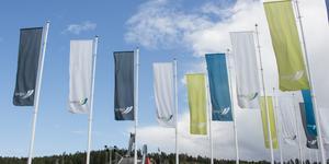 Lufab, Lugnet i Falun AB, bildades 2011 som ett kommunägt bolag. Företaget ska utveckla, äga och förvalta fastigheter och anläggningar på Lugnet.