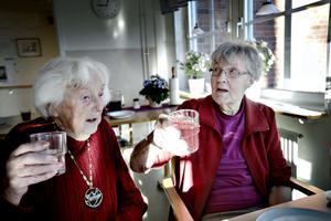 Sonja Klaesson och Svea Embretsén skålar i lingondrickan som serveras.