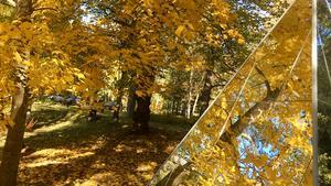 Speglingar - Höstpromenad i Skulpturparken, Ängelsberg.                                                                  Foto: Birgitta Åkerlind
