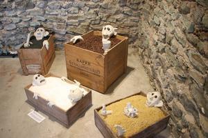 Figurerna ligger i trälådor fyllda med svart havssand, kaffebönor, strösocker och makaroner. Med