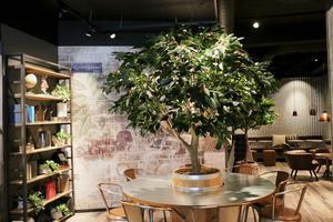 Nu har Espresso House också etablerat sig i Sandviken.